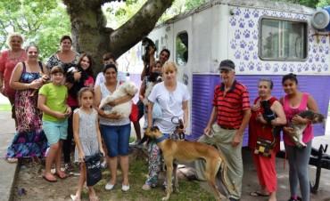 Castración de mascotas en vecinal Adelina Centro de Santo Tomé