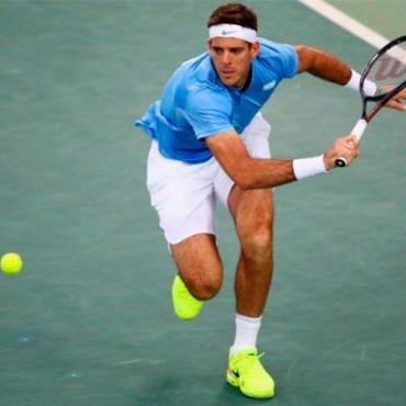 Del Potro se ubica en el puesto treinta del ranking ATP