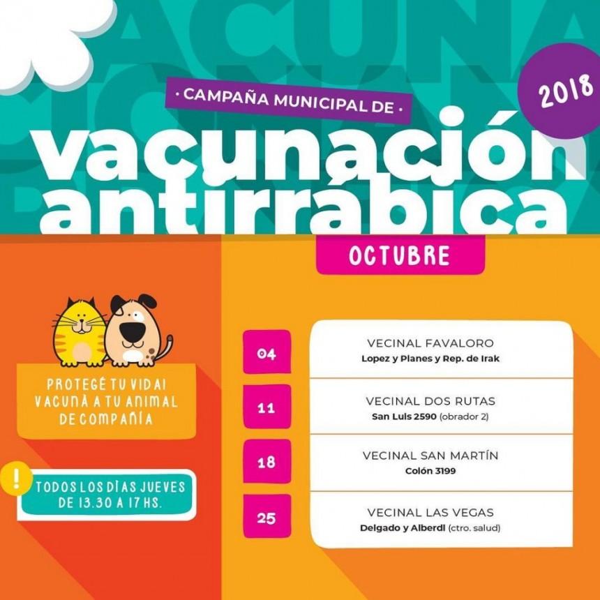 Vacunación antirrábica de mascotas en Santo Tomé