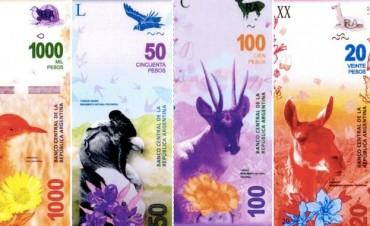 El Banco Central lanzará billetes con imágenes de animales autóctonos en reemplazo de las de próceres