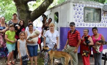 Castración de mascotas en barrio Zaspe de Santo Tomé