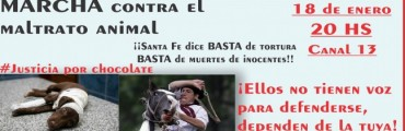 Marcha contra el maltrato animal programada para el miércoles