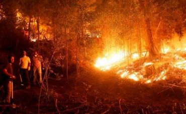 Estado de emergencia en Chile por los incendios en el centro y sur del país