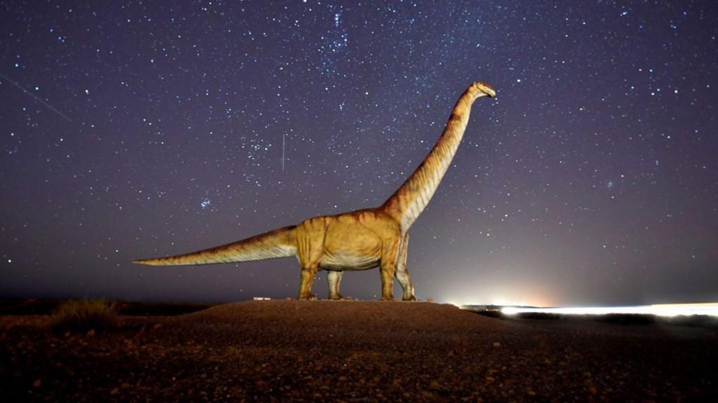 Hallaron restos de fósiles de un dinosaurio en Neuquén y en Concordia se escaparon cabras