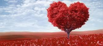 Los argentinos gastarían cuatrocientos cincuenta pesos promedio por el Día de los Enamorados