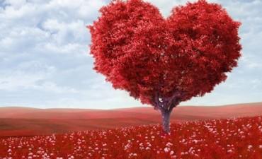 Las ventas por el día de San Valentín bajaron más de tres por ciento