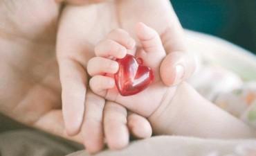 Nacen siete mil bebés por año con cardiopatías congénitas en el país