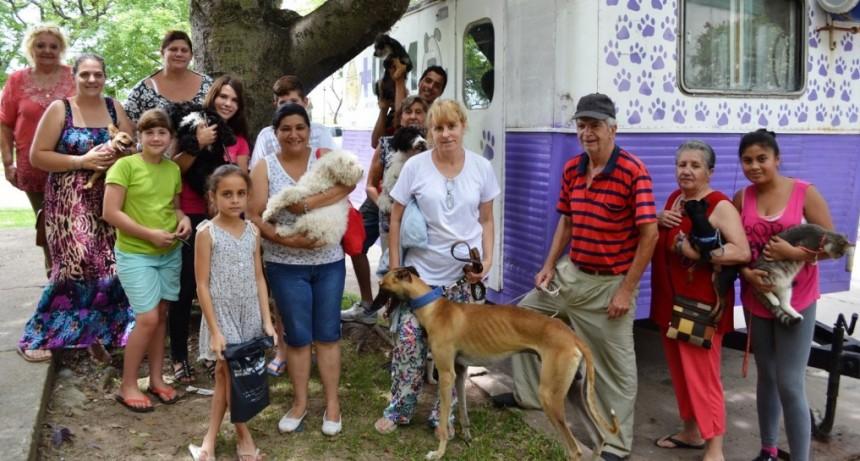 Castración de mascotas en vecinal Adelina Este de Santo Tomé