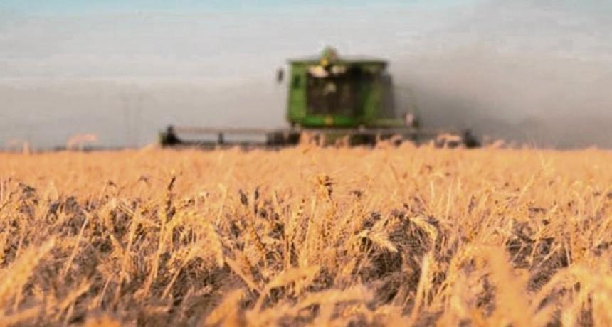 La campaña agrícola sumaría más de 33 mil millones de dólares