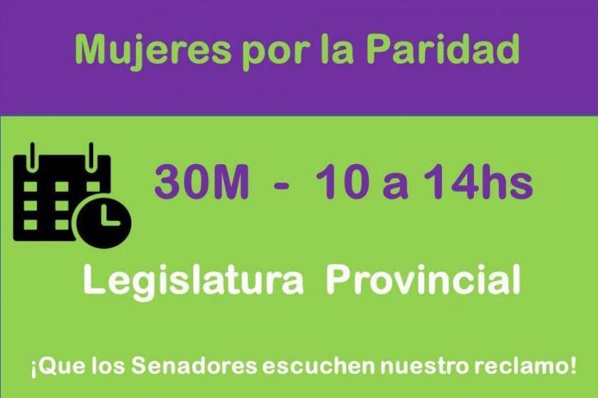 Mujeres se movilizan a la Legislatura por la ley de paridad