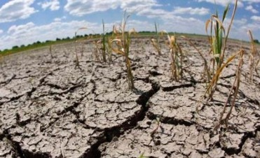 La sequía se extiende en el ochenta por ciento de la región núcleo