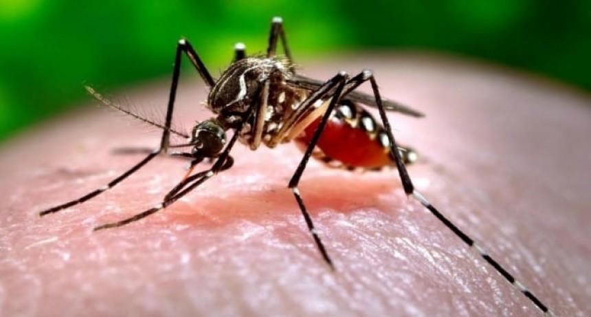La ciudad de Santa Fe tiene 67 casos de Dengue