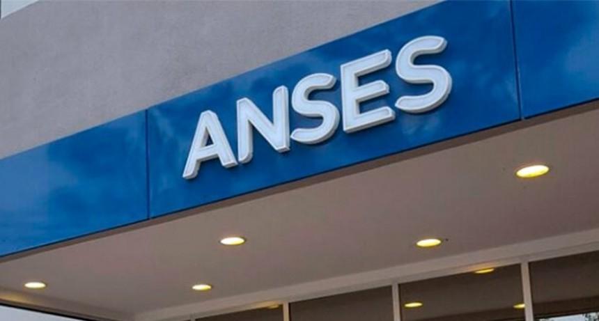 ANSES: medidas adquiridas por la emergencia sanitaria