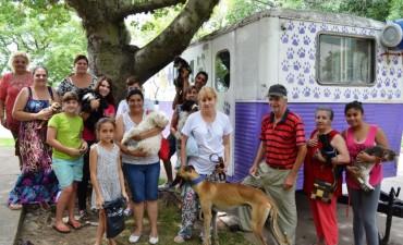 Castración de mascotas en vecinal Centro de Santo Tomé
