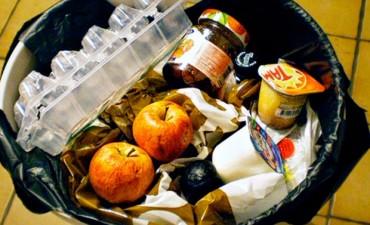 Dieciséis millones de toneladas de alimentos se desechan por año en el país