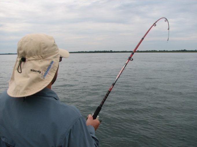 Piden prohibir la pesca en la provincia para preservar el recurso