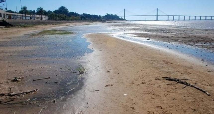 Solicitan a tres provincias un plan integral por la bajante del río Paraná