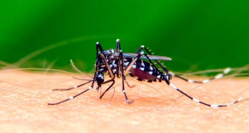 Los casos de dengue siguen en aumento en la provincia de Santa Fe