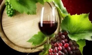 El consumo de vino cayó más de trece por ciento en el primer cuatrimestre