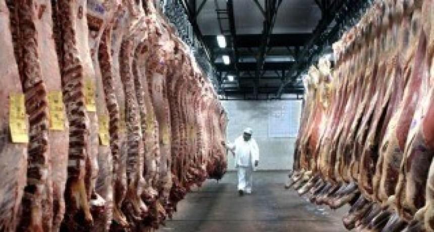 La exportación de carne vacuna creció sesenta y cinco por ciento en un año