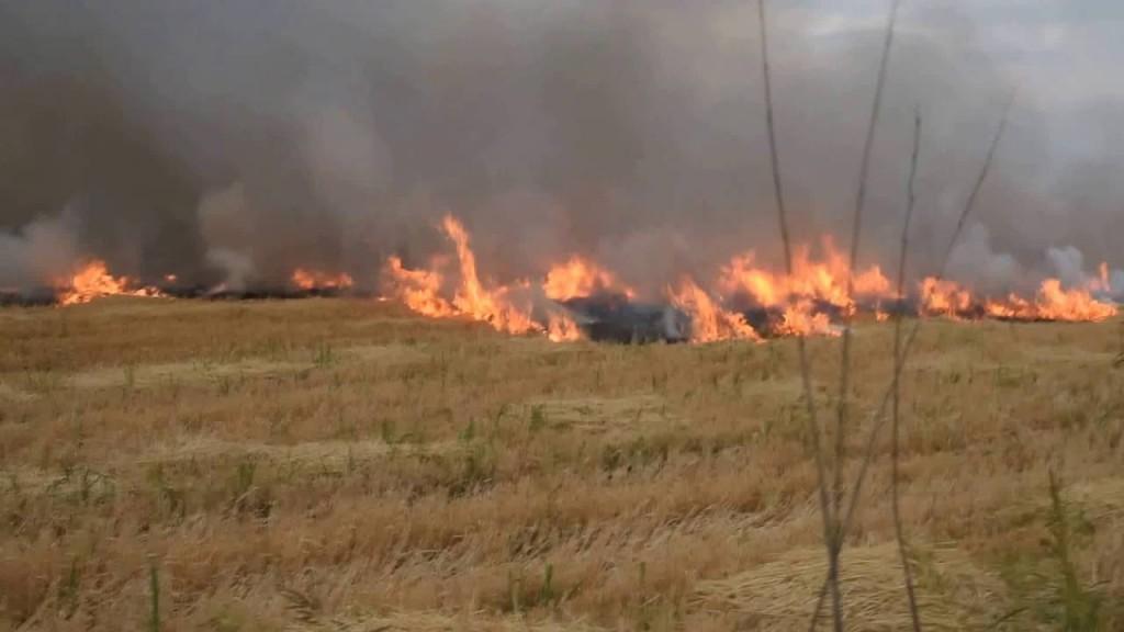 Más de 500 mil hectáreas están afectadas por la quema de pastizales