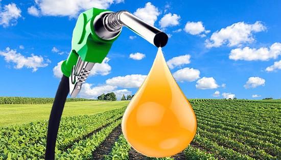 El nuevo marco regulatorio de los Biocombustibles puede afectar Pymes santafesinas en el caso del biodiésel