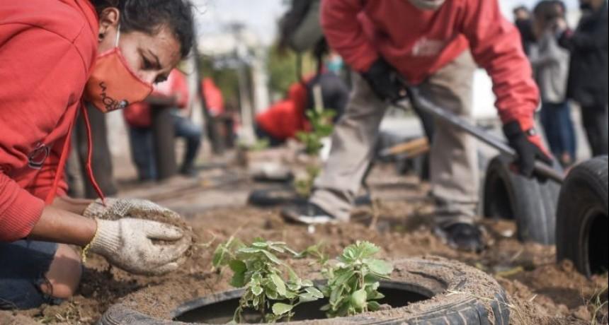 La ciudad registra más de 50 microbasurales