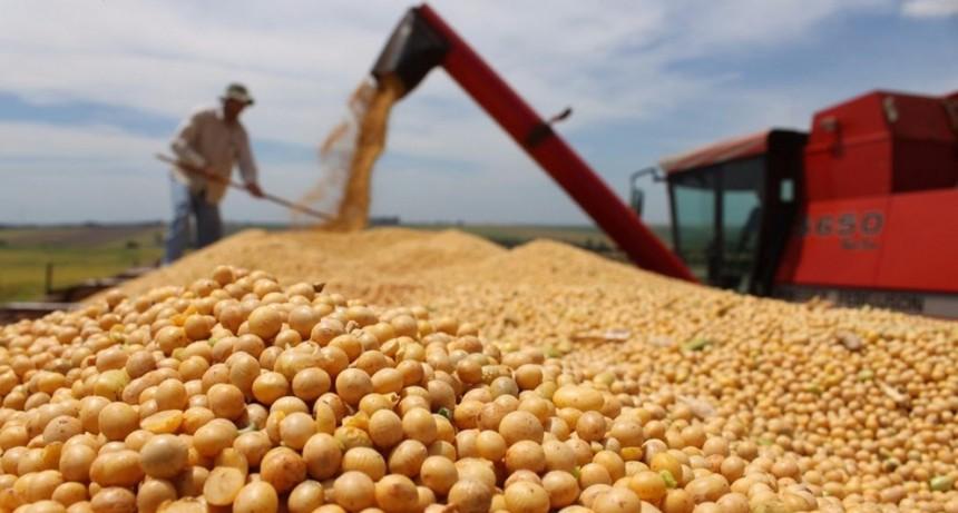 Santa Fe exportó un 20% menos en los primeros cinco meses del año