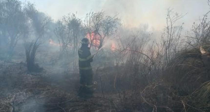 Los bomberos ya intervinieron en más de 1200 incendios en lo transcurrido de 2020