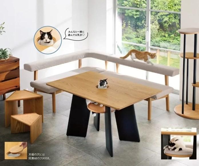 Japoneses crearon una mesa para que gatos compartan almuerzos y cenas con sus dueños