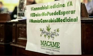 Diputados dio media sanción al proyecto para el uso de cannabis medicinal