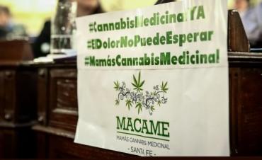 Es ley el uso medicinal del cannabis en Santa Fe
