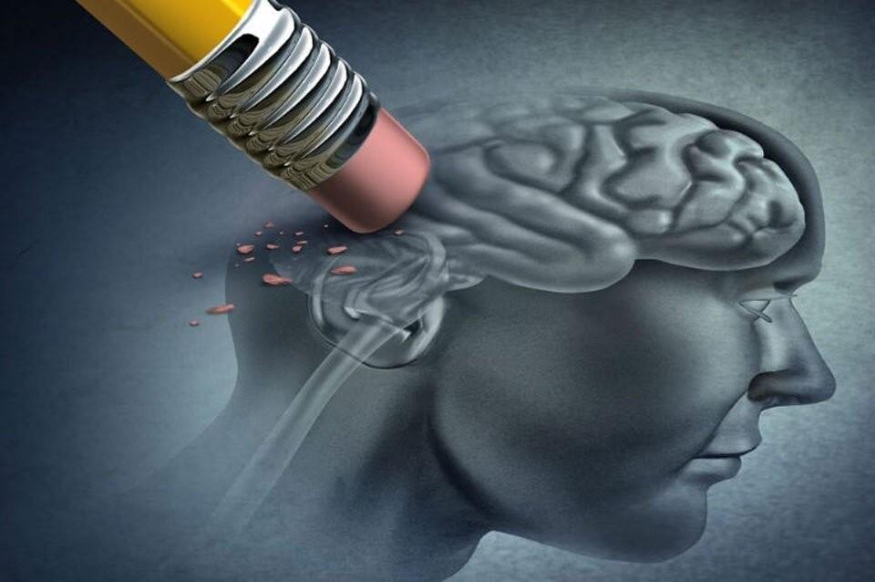 Distinguen a científicos santafesinos por un tratamiento contra la demencia